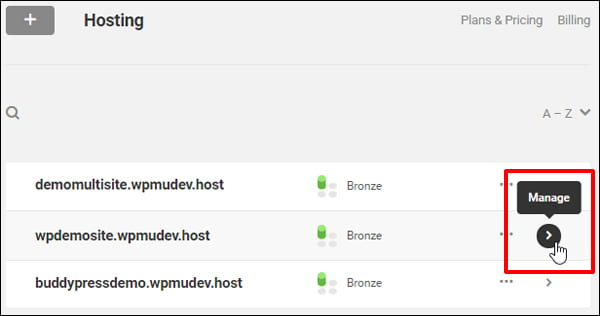 WPMU DEV Hosting Hub - Manage