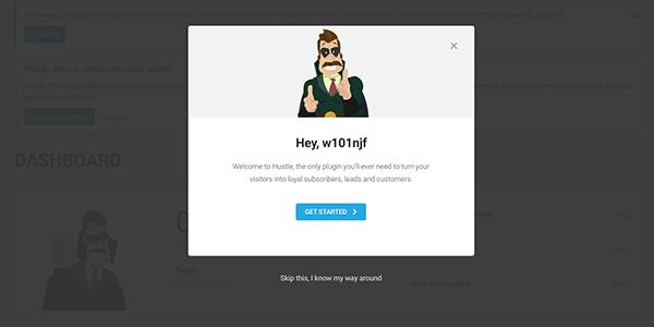 Hustle plugin for WordPress introduction.