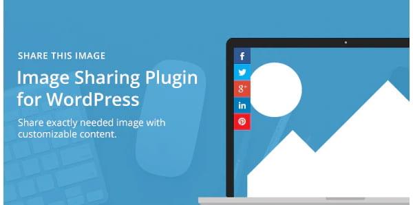 Share This Image - Image sharing WordPress plugin