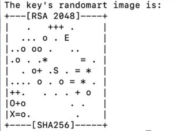 Example of randomart