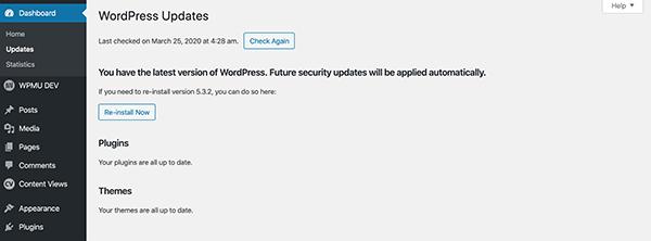 WordPress updates.