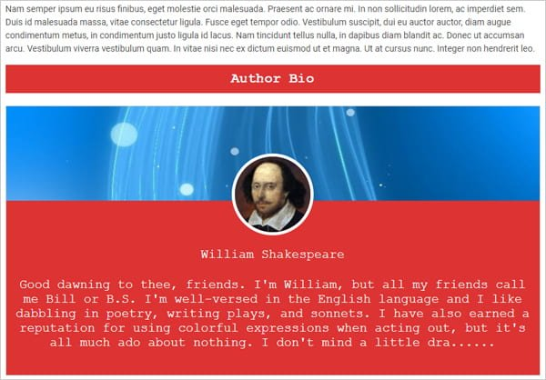 About Author author box plugin example.