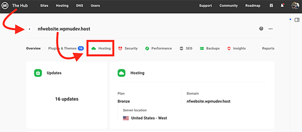 The Hub hosting tab.
