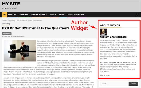 Meks Author Widget displaying on sidebar.