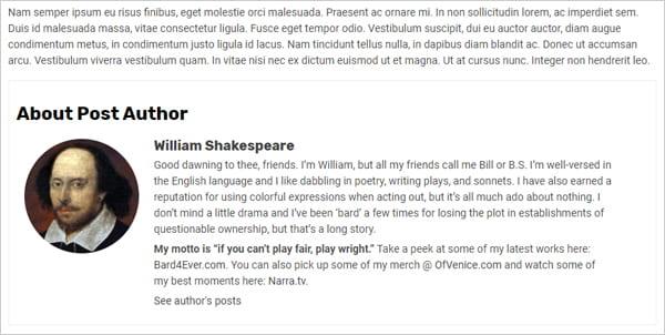 WP Post Author Bio Box Example.