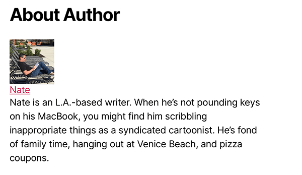 simple author box example.