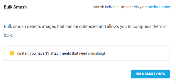 Screenshot of the amount of images that need smushing - 19.