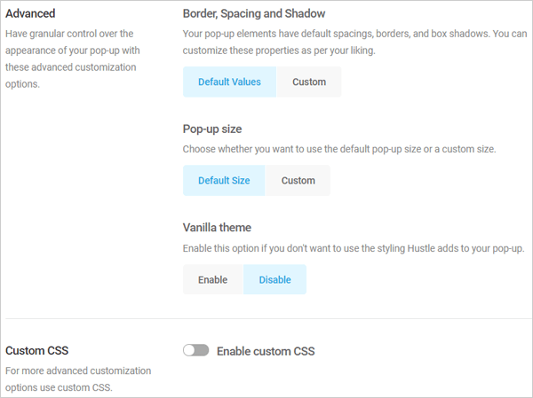 Hustle Advanced Options and Custom CSS.