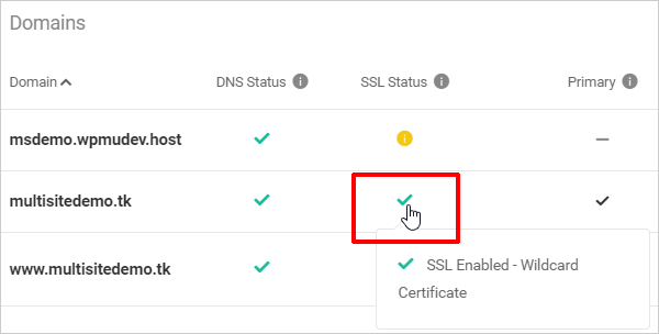 Primary domain set with wildcard SSL