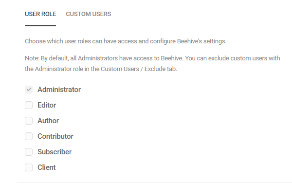 Screenshot of the user roles to which you can grant access to Beehive's settings.