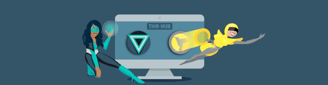 The Hub Performance Tab - Hummingbird and Smush