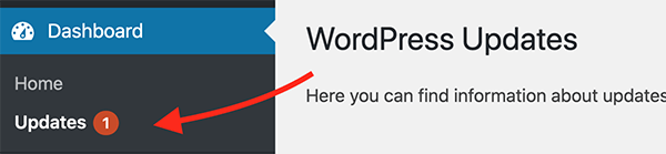 Where the WordPress updates are in the admin.