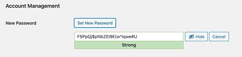 The strong password that WordPress generates.
