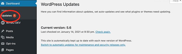 The update area in WordPress admin.
