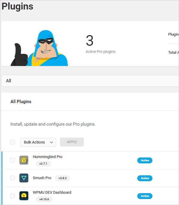Hummingbird activated in WordPress site.