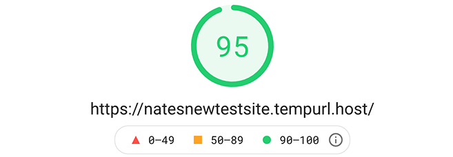 95 google pagespeed insight score.