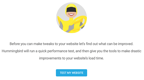 The test my website button.