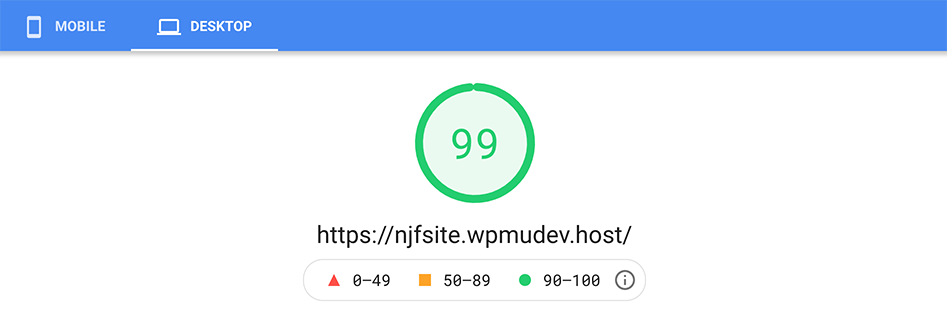 Google pagespeed insight score of 99