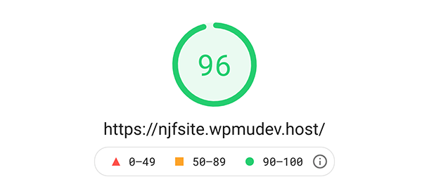 First google pagespeed insights score.