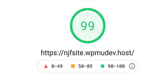 2nd google pagespeed insights score.