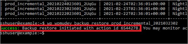 WP-CLI Restore Backup