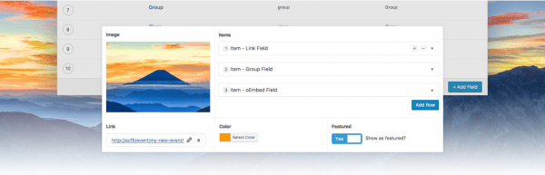 Advanced Custom Fields - A powerful WordPress customization plugin.