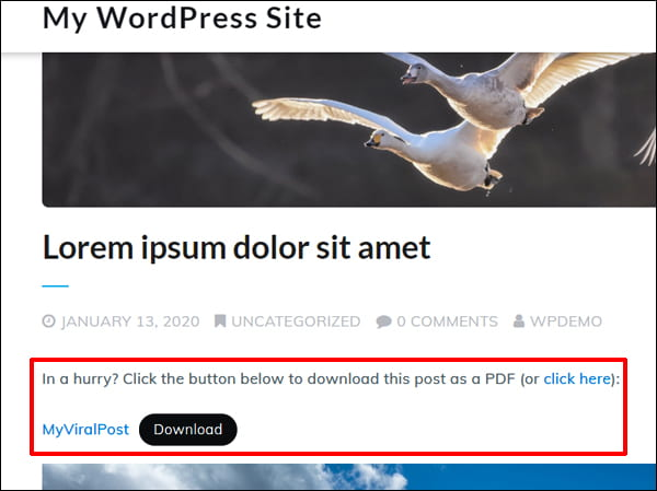 Screengrab of demo post with link to download a PDF file.