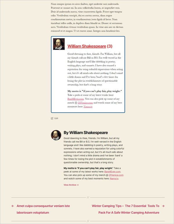 Twenty-twenty theme with duplicated author boxes.