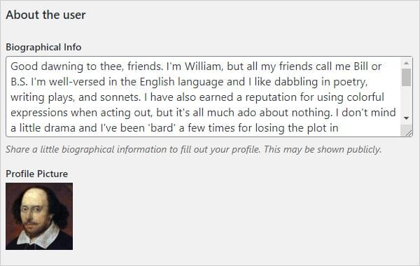 WordPress User Profile - Biographical info