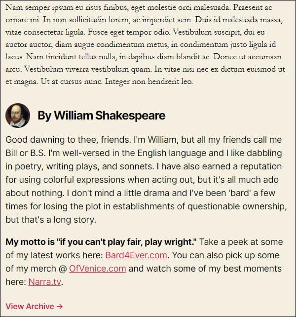 WordPress Twenty Twenty Theme - Post Author Bio