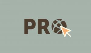 Pro Sites