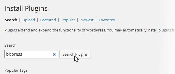 bbpress search