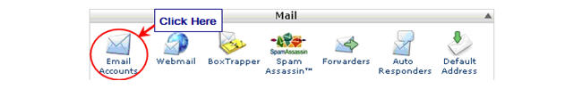 Image of email tab in cPanel