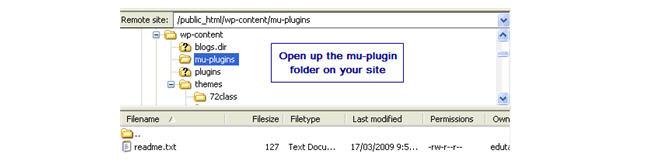 Image of mu-plugin folder on site