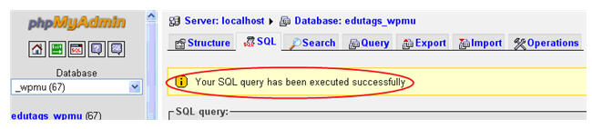 Image of successful SQL query