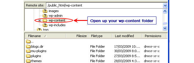 Image of wp-content folder