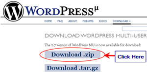 Image of WPMU zip download