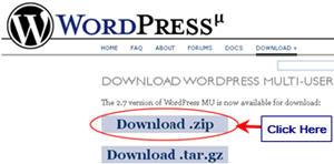 Image of WPMU zip download