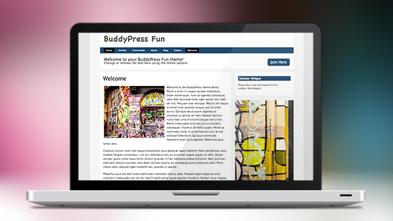 Buddypress_fun