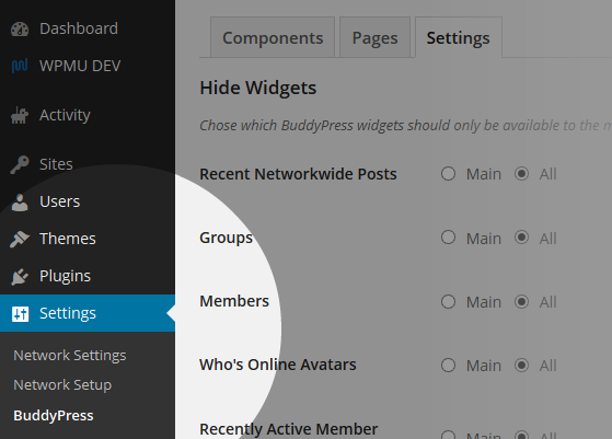 BuddyPress Hide Widgets Network Menu