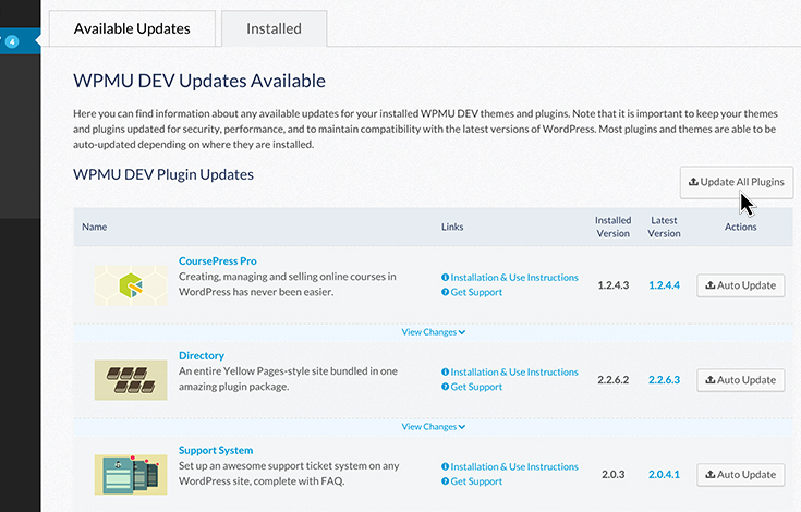 One-click updates on all our premium plugins and themes.