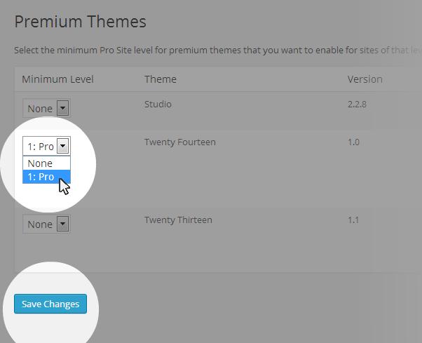 Premium themes pro