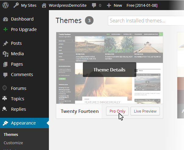 Themes pro only