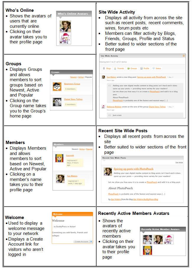Summary of BuddyPress Widgets