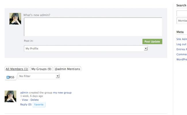 BuddyPress Social activity