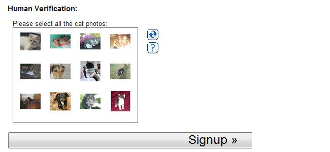 Checking Pick your cat on Sign up page