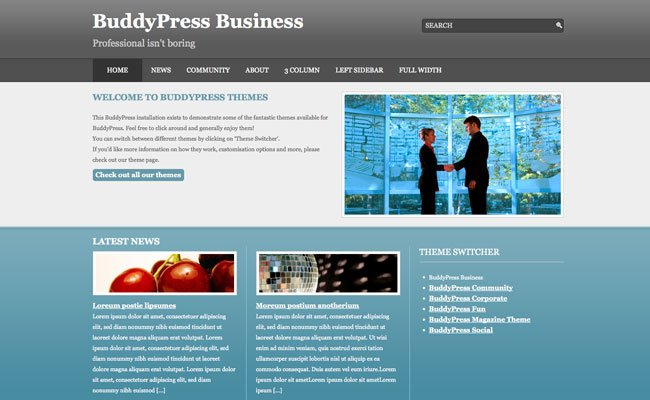 BuddyPress Business