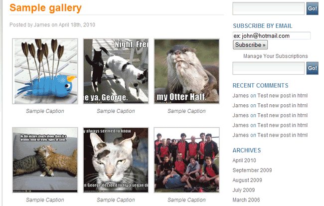 Sample Gallery and image CSS