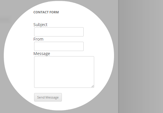 Contact Widget - front-end