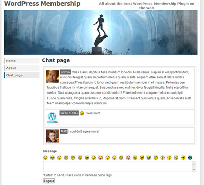 chat plugin in use in a wordpress page